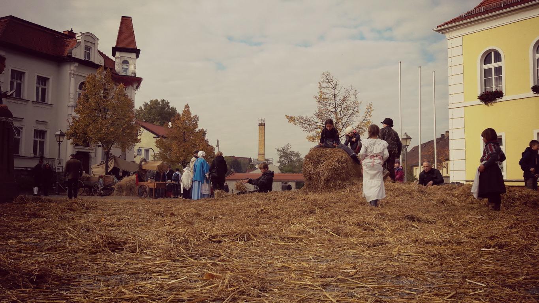 Das Dorf 1813-  Wolkser Höfe 2016 -  Liebertwolkwitz - (Bild: Jens Fischer)