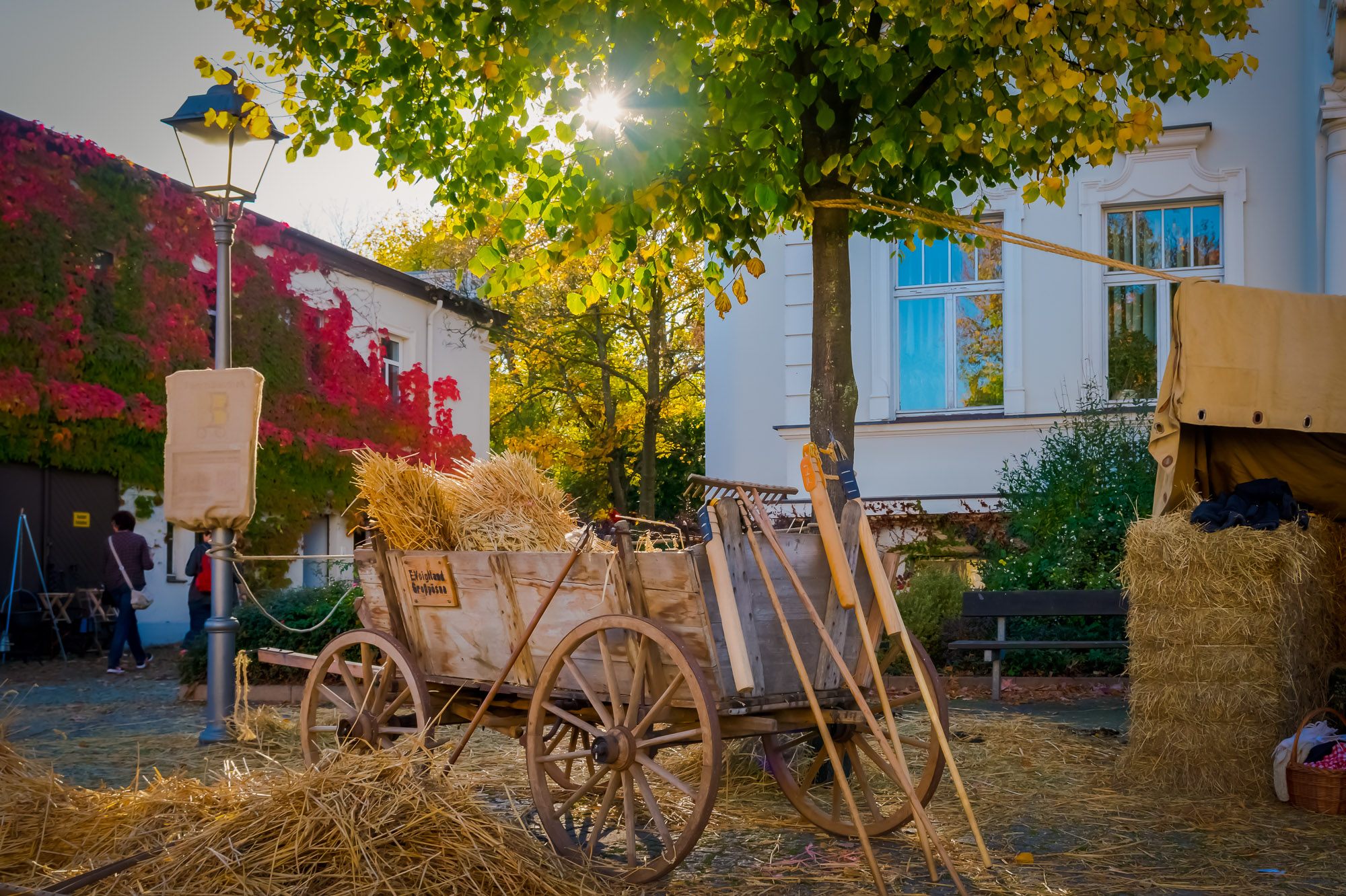 Bild/Foto: Sven Götze